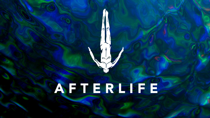 Afterlife 2020